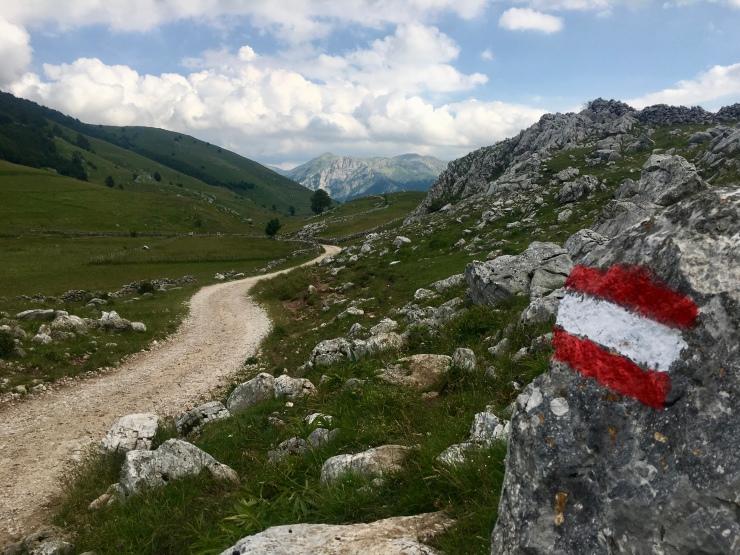 trail-marking_44623608205_o
