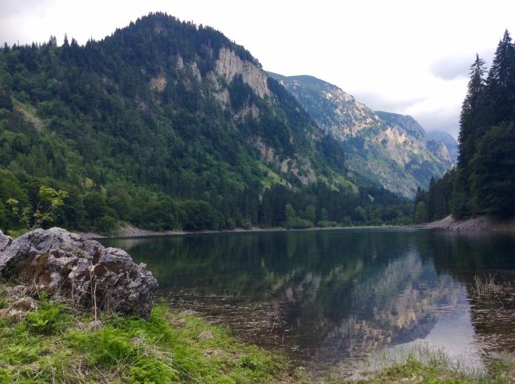 valley-campsite_44812091194_o